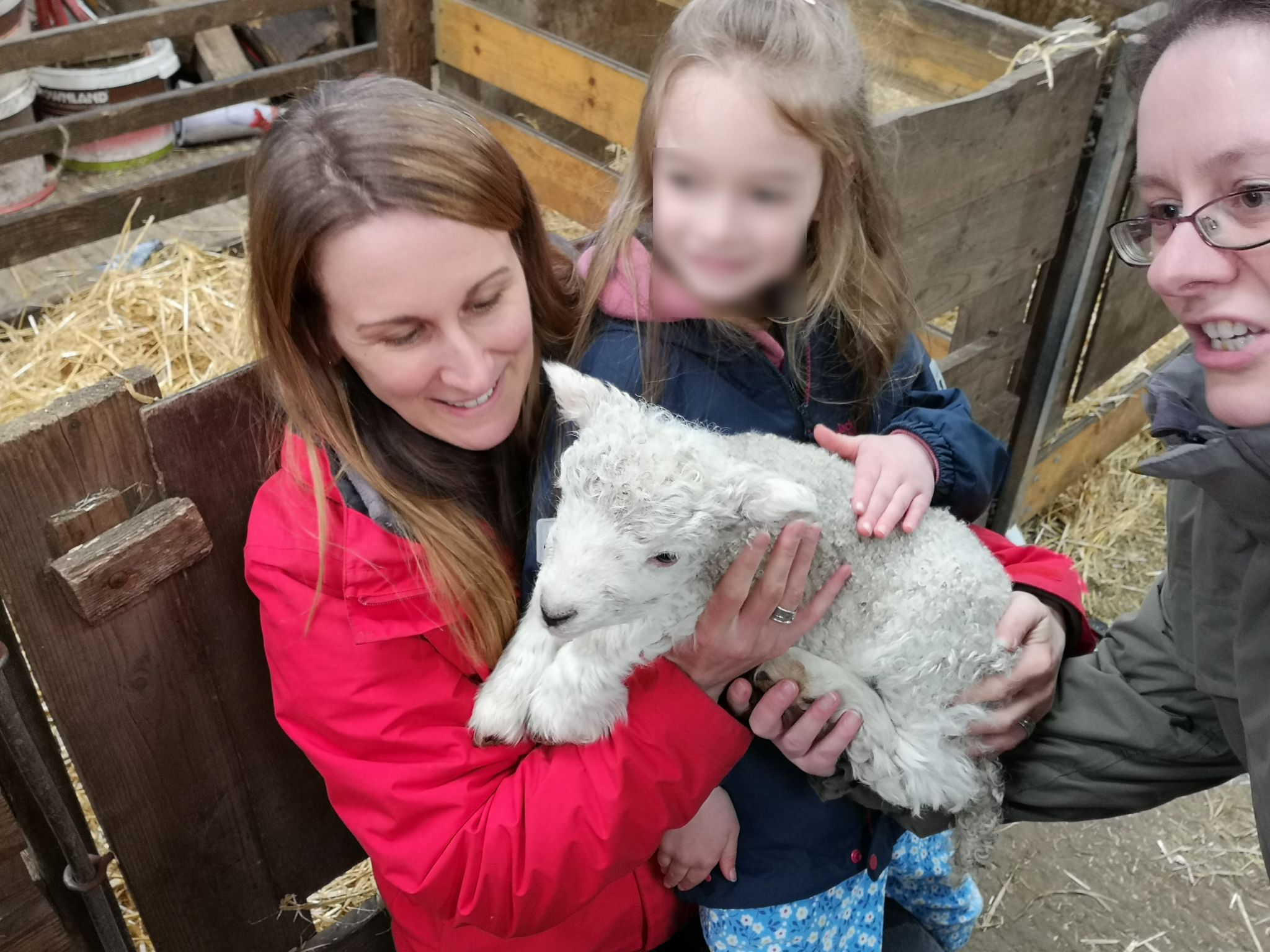 Clearbrook Wild Child: Lambing Live