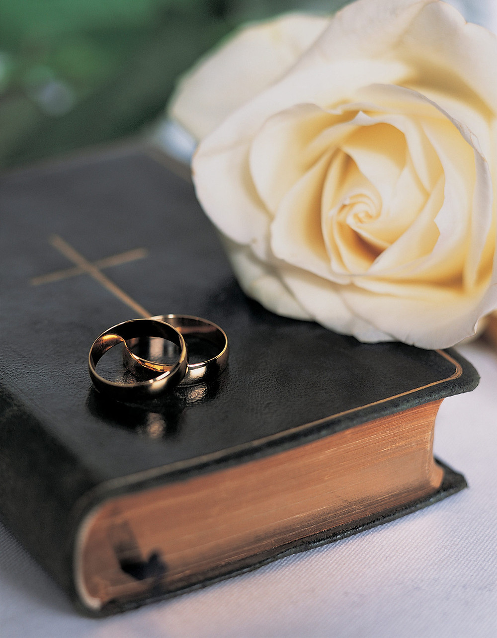 wedding bands on a bible and a white rose