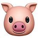 pig-face.png