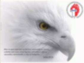 aguia.jpg