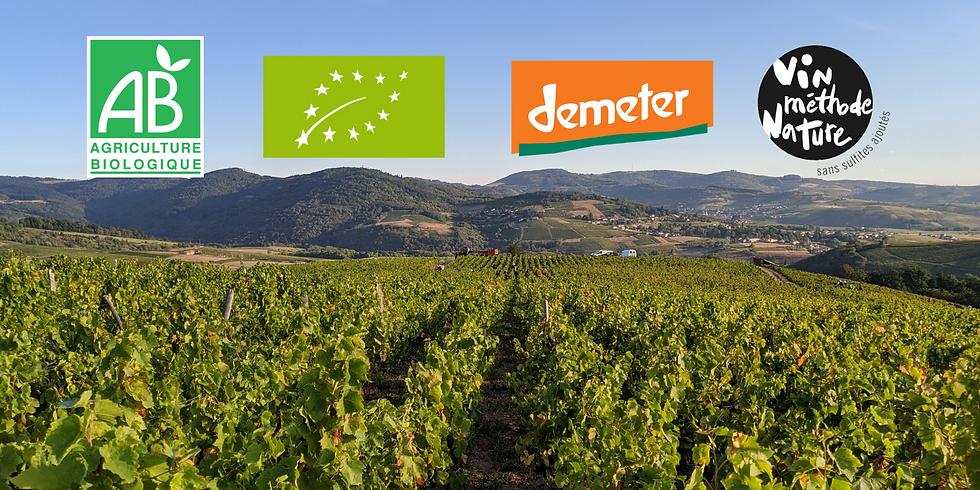 Dégustation confinée - Vin bio, biodynamique, nature ?