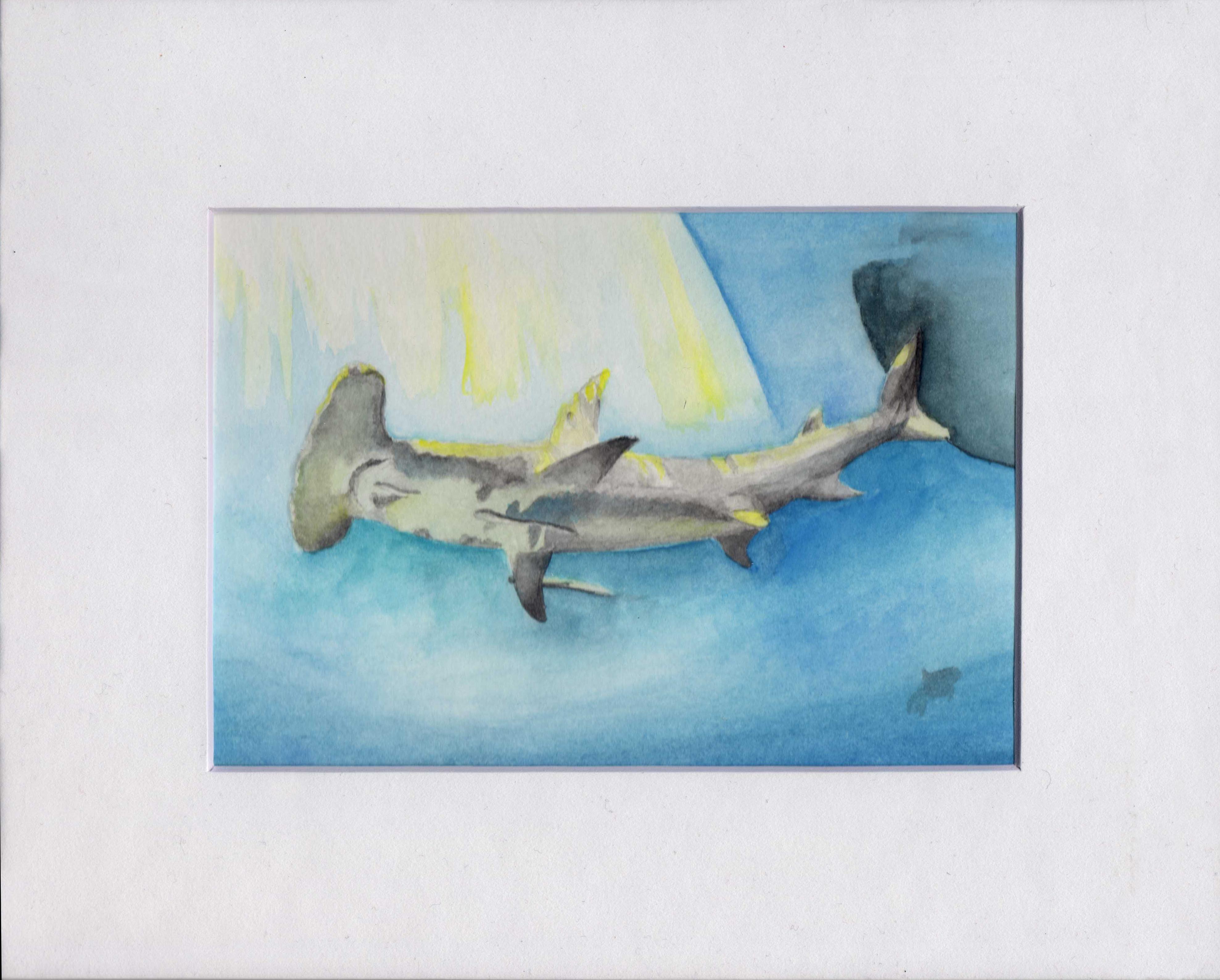 Watercolor Hammerhead Shark