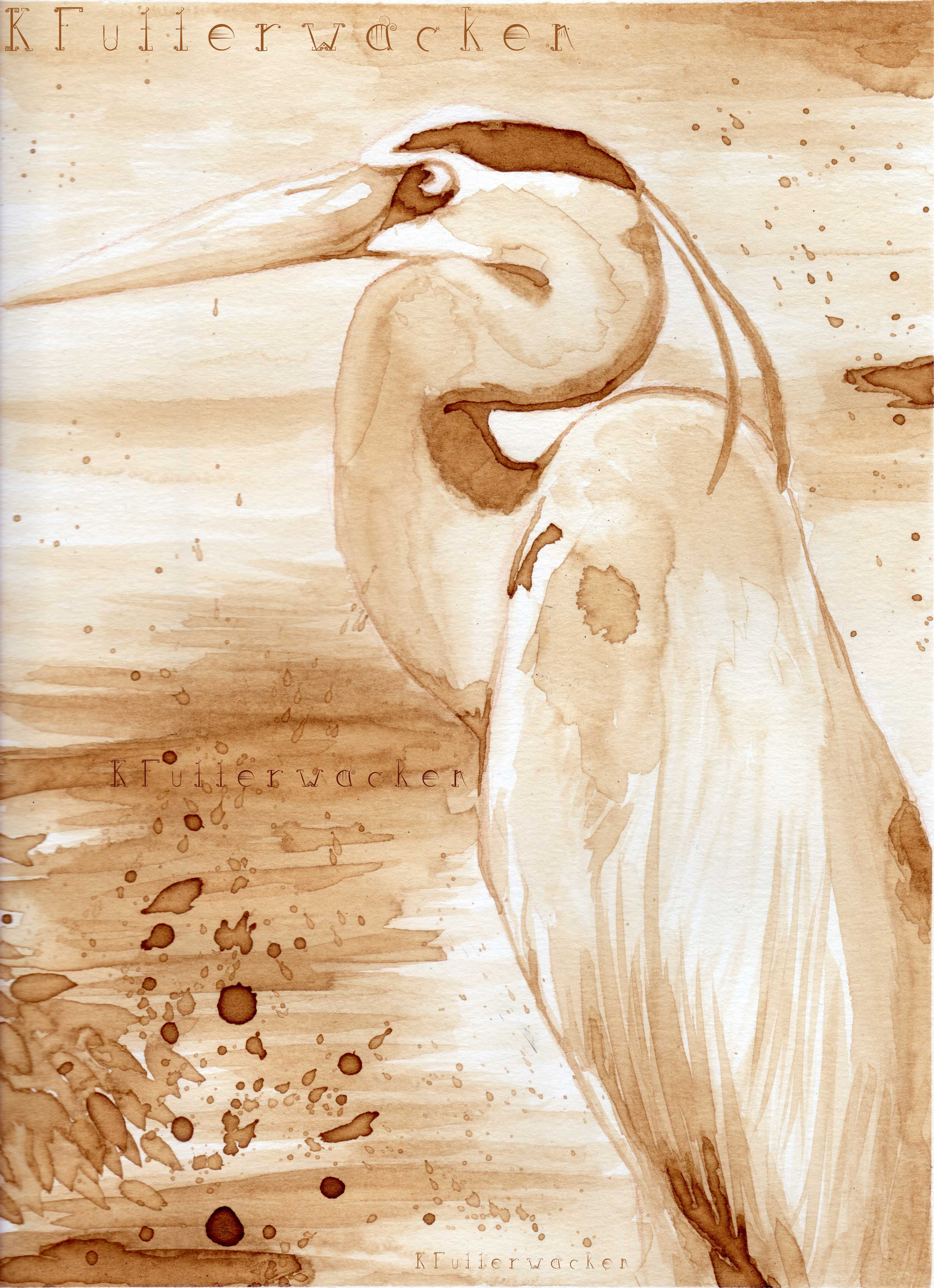 Coffee Blue Heron
