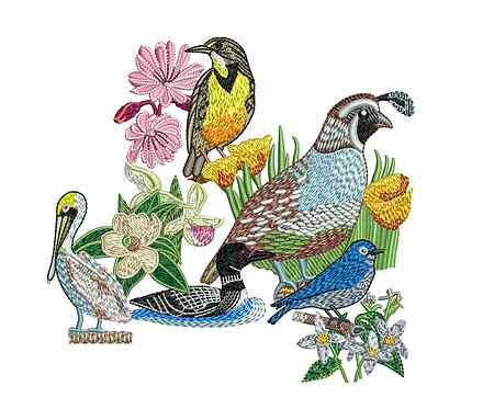 STATE BIRDS & FLOWERS VALUE PACK (ALL 50 DESIGNS)