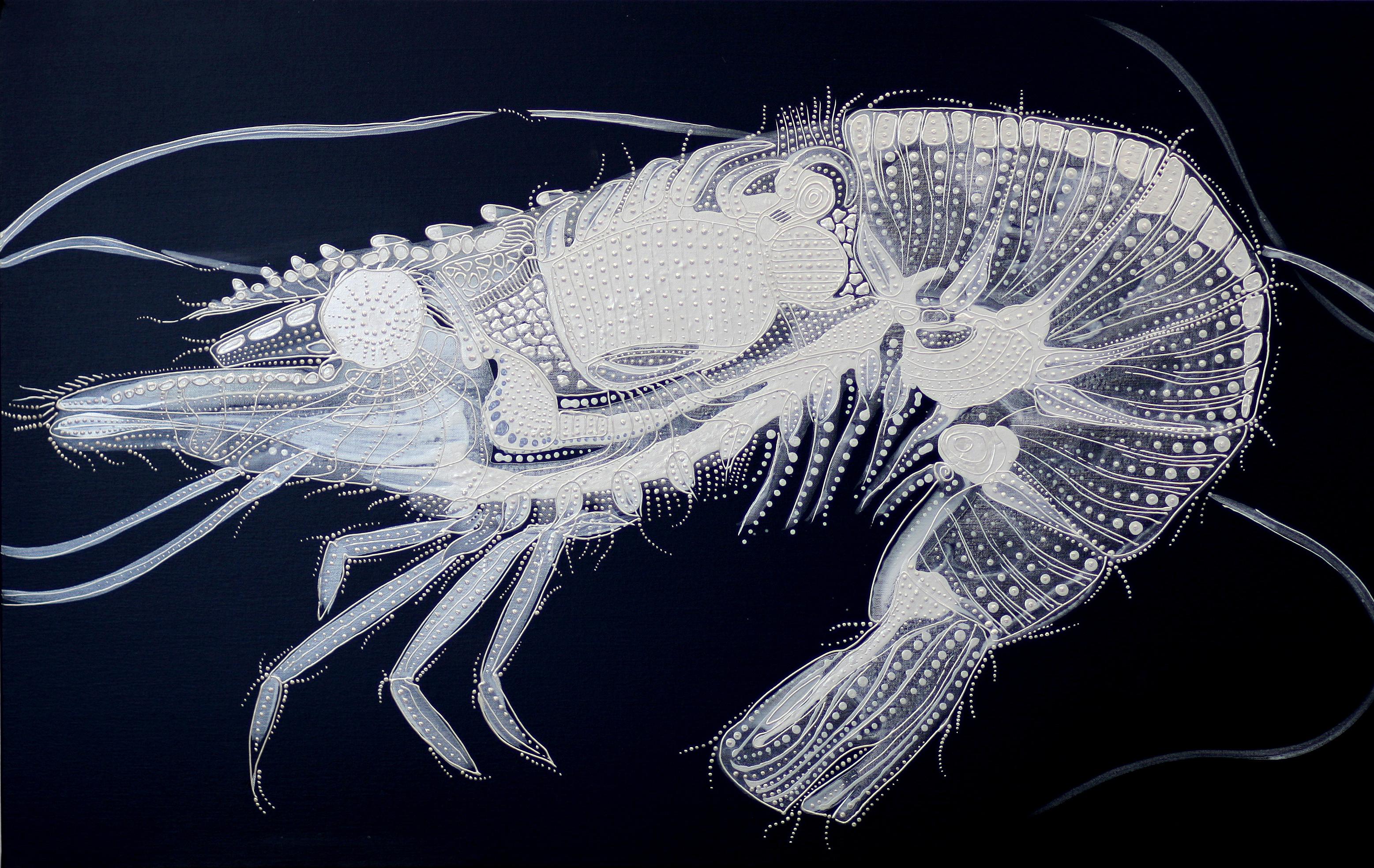 이호진|Shrimp (새우)