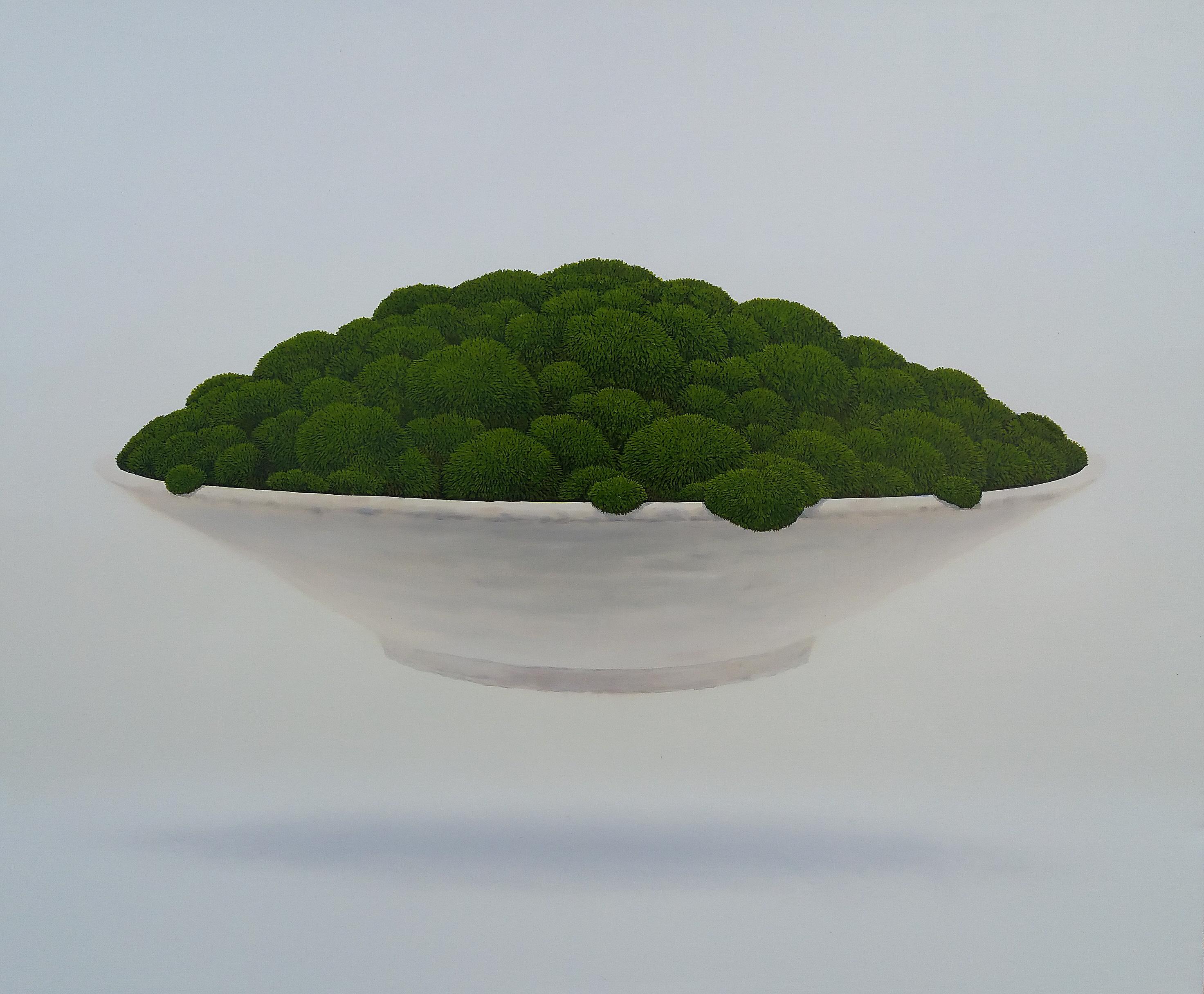 양종용|그릇이끼