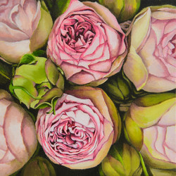 장미2, Oil on canvas, 21.0x26.0cm, 2008