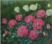 lks-redrosesgarden-15-8f.jpg