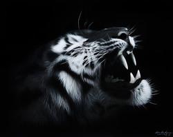 김태형|The Roar #3