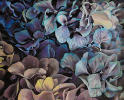 수국, Oil on canvas, 21.0x26.0cm, 2008