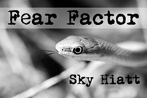 BAGR4: Fear Factor - Sky Hiatt | Black and Green Review