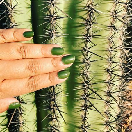 Nailed it, Phoenix, Arizona