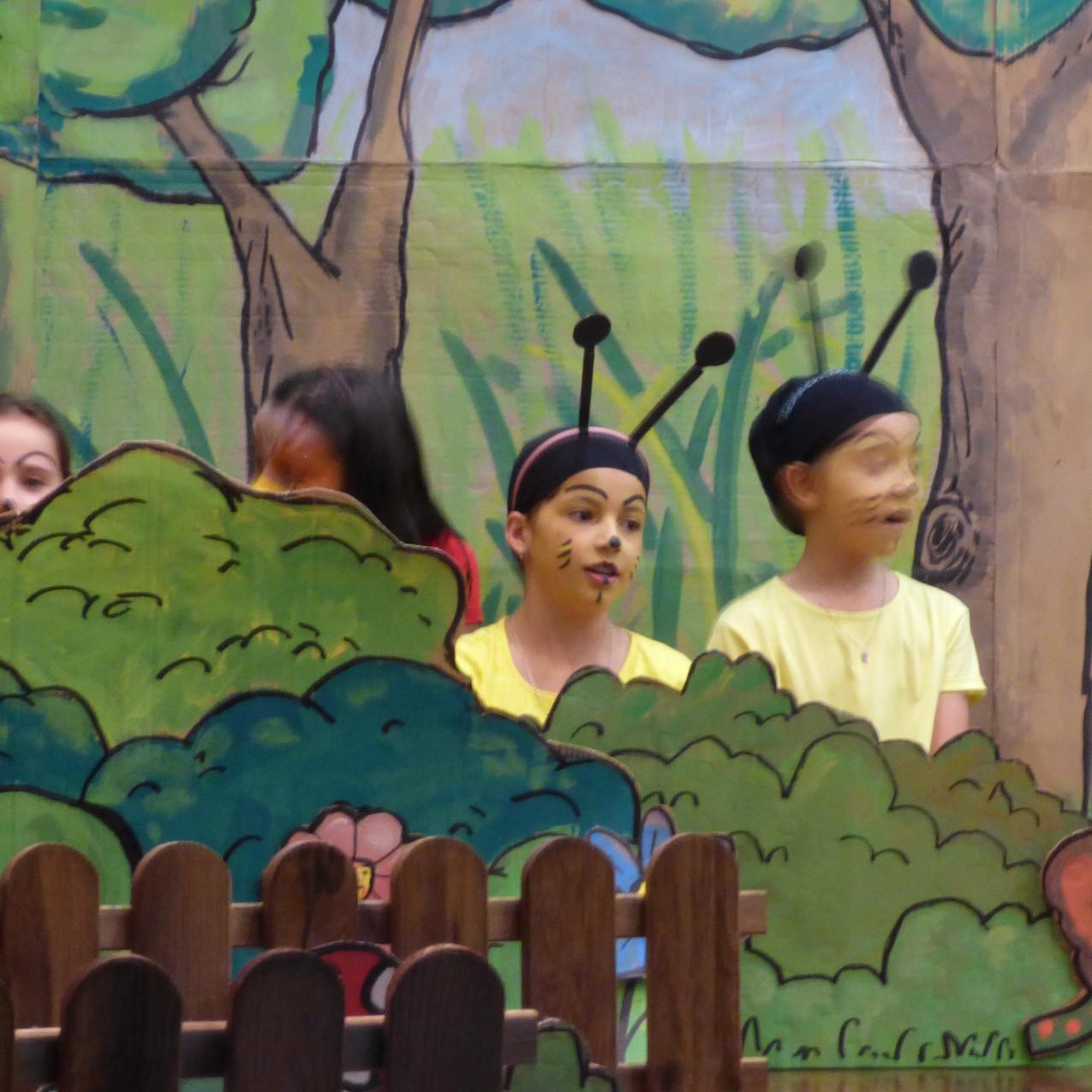 Amigos da Floresta