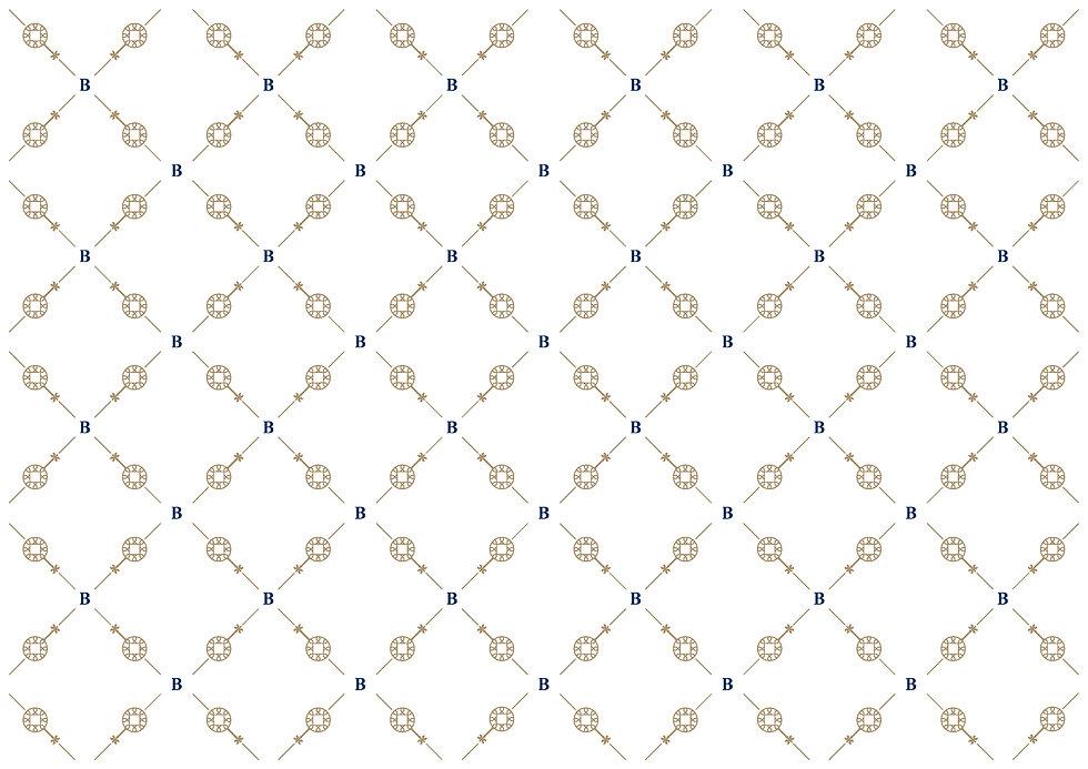BL_Muster02_Positive.jpg