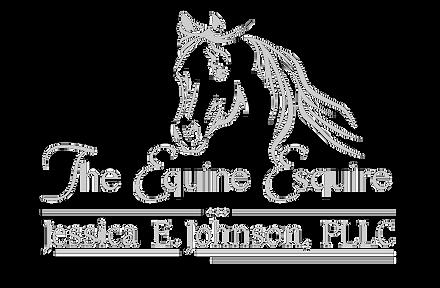 The-Equine-Esquire-Jessica-E-Johnson-PLL