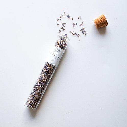 Tube lavande officinale sauvage bio - Provence