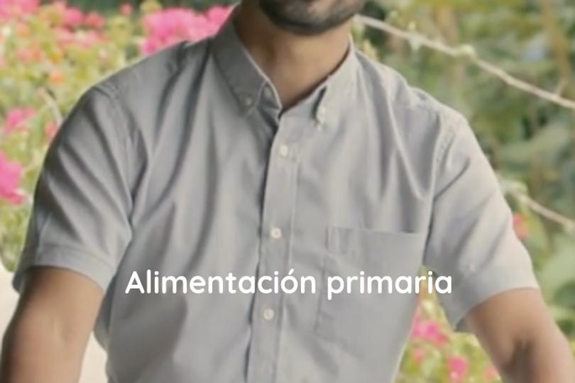 Alimentacion primaria