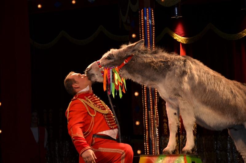 Timothy's Crazy X-mas Circus 2013 / 2014