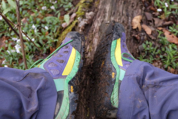 Day 20: Goodbye Merrills, Hello Dino Shoes!