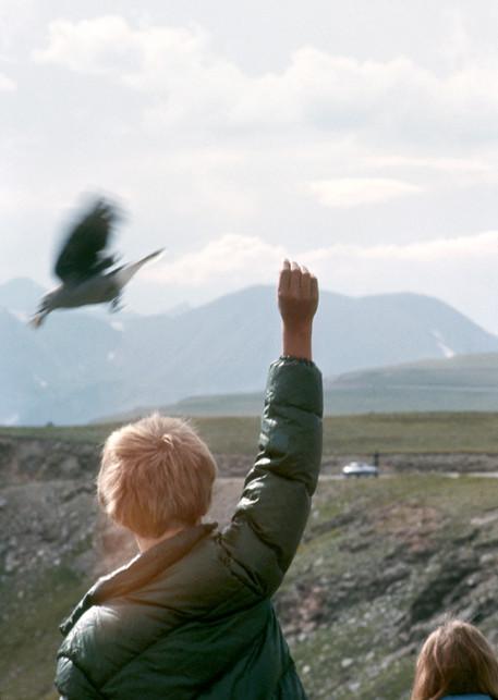 Colorado National Park- 1980