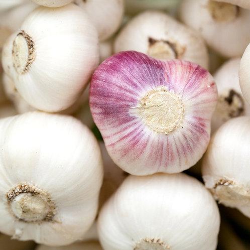 Garlic Infused Salt