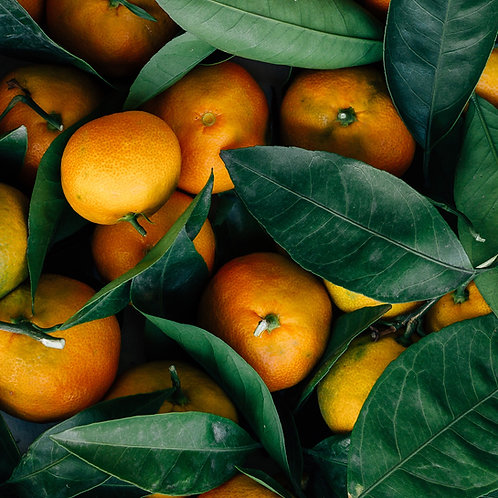 Mandarin Spice Infused Sugar