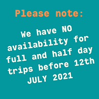 no availability.png