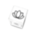 Packlane_Snapshot-7.png