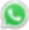 WhatsApp_Logo_1-transp-01.png