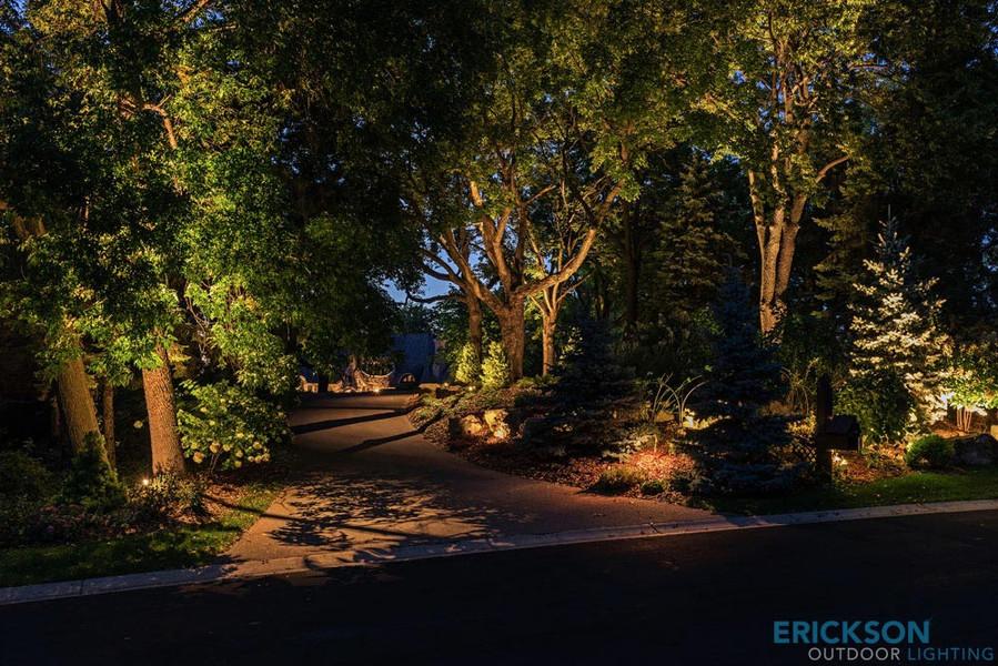 Landscapes 10.jpg