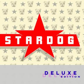 ☆ Stardog Events