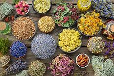 Bowls of dry medicinal herbs - lavender,