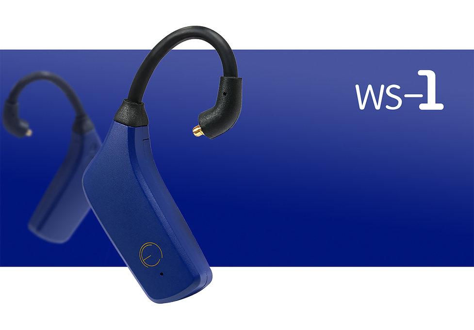 ws-1 EN11.jpg