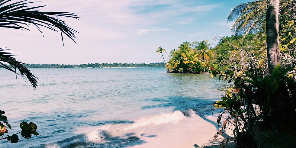 Pure Fiji Happy Hour