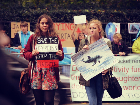 Protests as a Tool for Environmental Activism