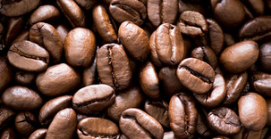 Commerce: Le Kenya envisage réformer la filière café