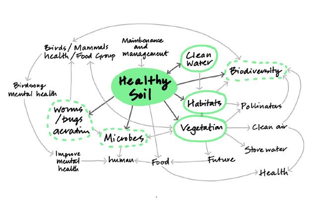 Landsmith Associates_Home of 2030_Design Principle_Healthy Soil