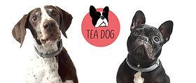 Logo Teadog