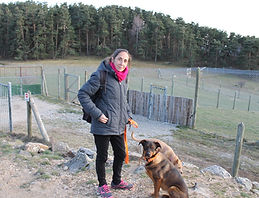 Promenade chiens Montpellier
