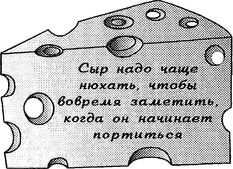 сыр5.png