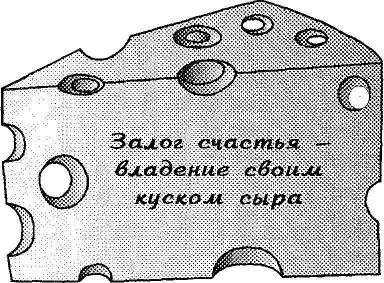 сыр1.png