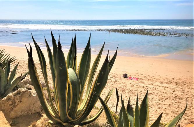 COSTA DE LA LUZ - PLAYA DE LOS CAÑOS DE MECA - PAGO DE ZAHORA BEACH