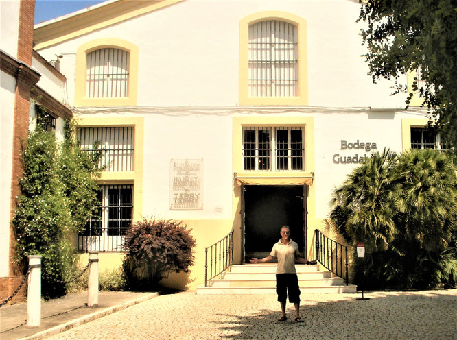 ANDALUCÍA - CÁDIZ- JEREZ DE LA FRONTERA - BODEGAS PEDRO DOMECQ
