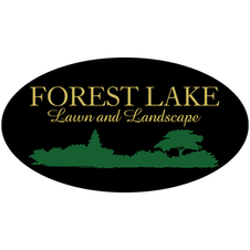 Forest Lake Wix.png