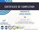 Certificate Python.jpg