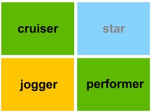 CRUISER…JOGGER…PERFORMER