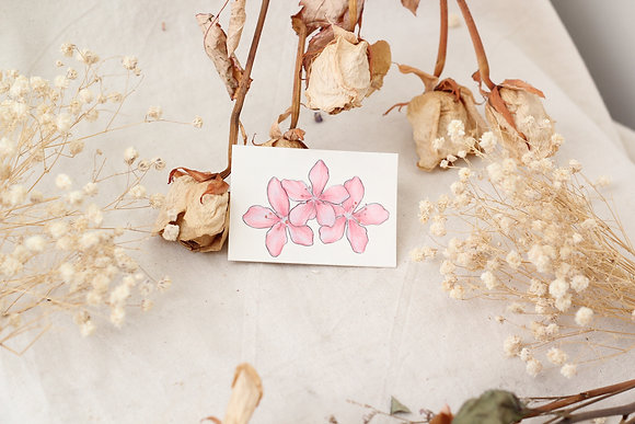 TTS #Cherry Blossom