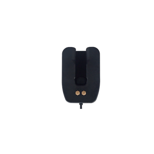 AINA voiceresponder single vehicle charger