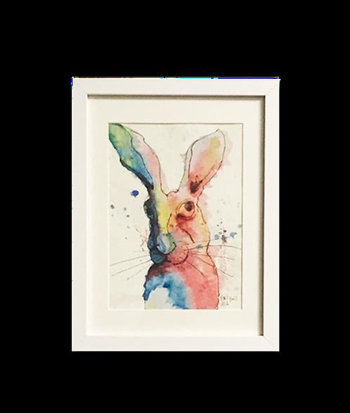 Conejo amor