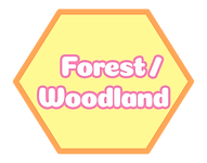 forest woodland.png